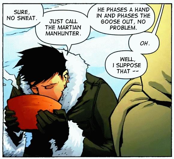 Zen Robin Panel 02